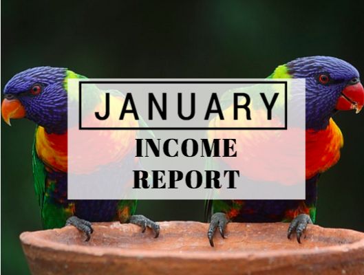 January income report 2016