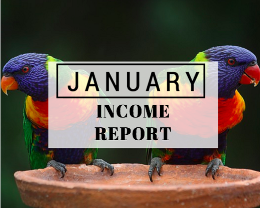 January Income report
